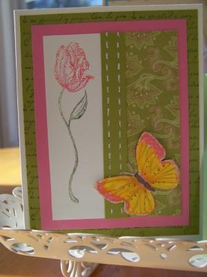 Ramona Spanish Rose Spring